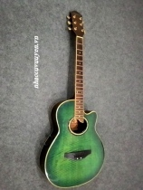 Guitar Acoustic Crgetman EA-500